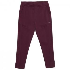 Spodnie dresowe męskie H4Z21-SPMD017 60S 4F
