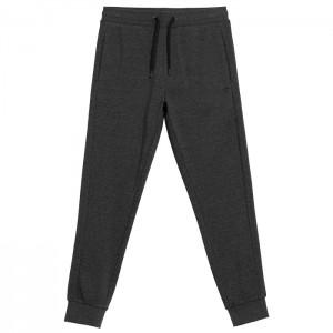 Spodnie dresowe męskie NOSH4-SPMD351 24M 4F