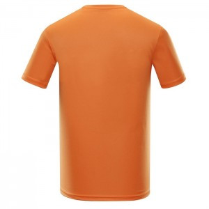 Koszulka techniczna męska QUART 2 ALPINE PRO 311PB