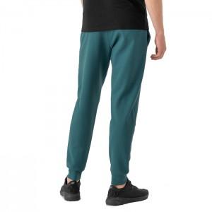 Spodnie dresowe męskie HOZ21-SPMD601 32S OUTHORN