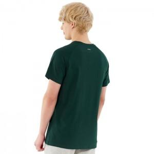 Koszulka męska HOL21-TSM642 40S OUTHORN